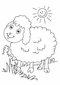 Dibujo de ovejita para colorear