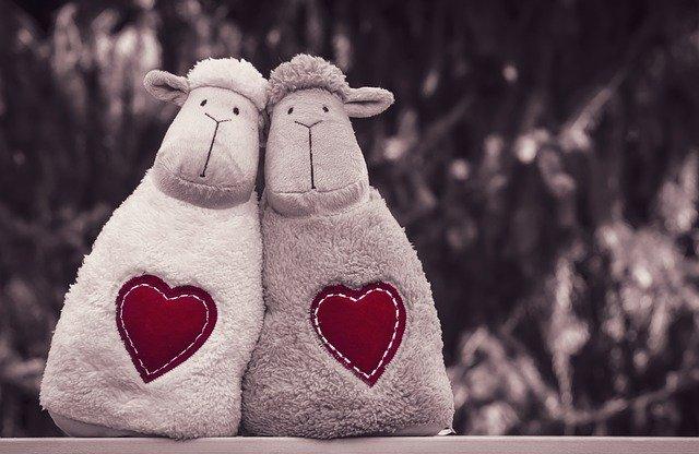 Dos peluches de oveja juntos